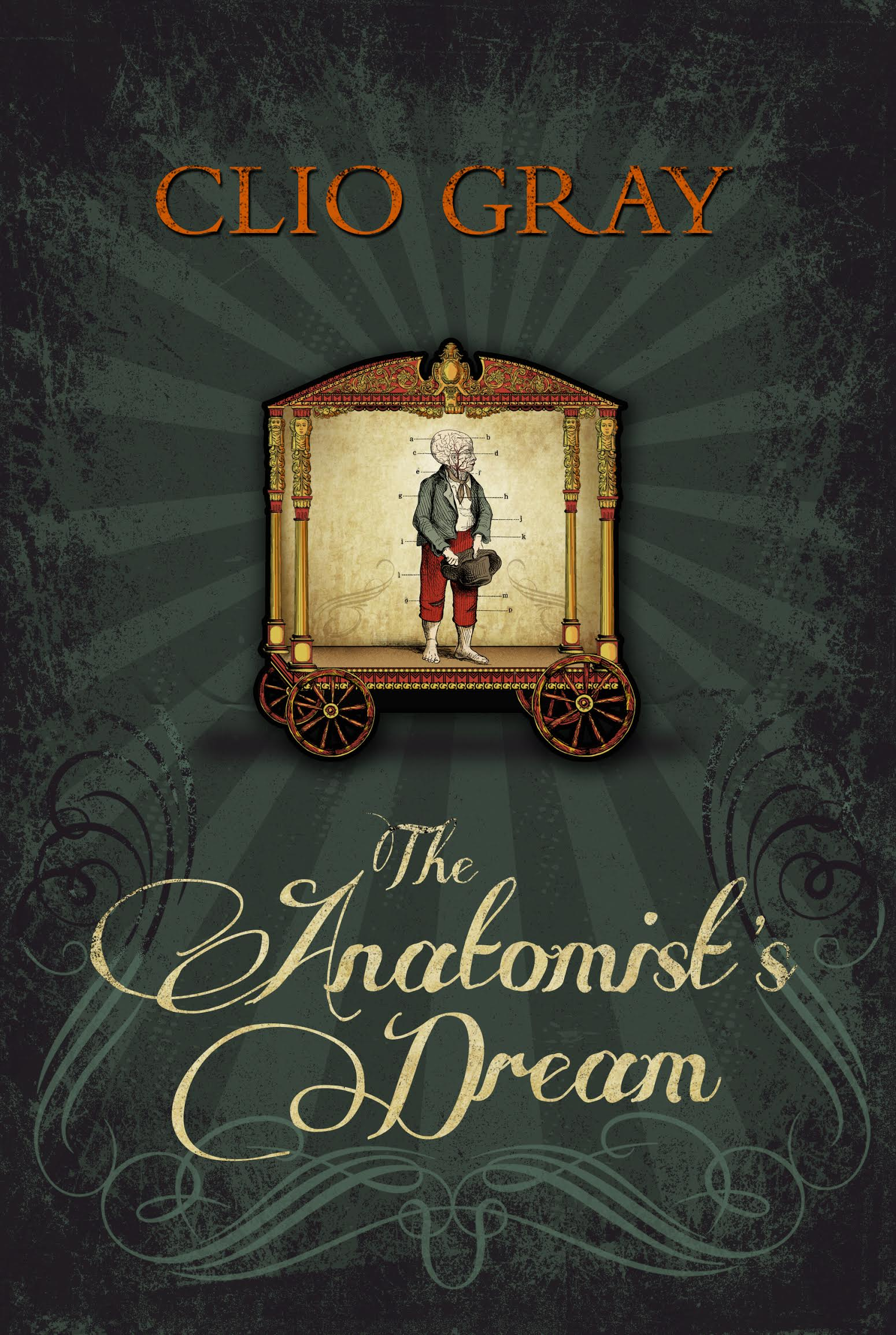 Featured image of The Anatomist's Dream