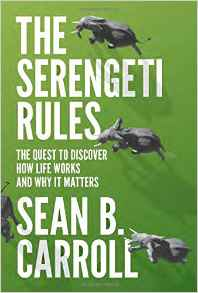 Featured image of The Serengeti Rules: the quest to discover how life works and why it matters
