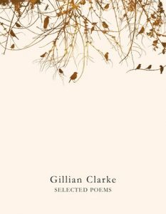 gillian-clarke-selected-poems-9781509821921