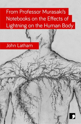 Featured image of From Professor Murasaki's Notebooks on the Effects of Lightning on the Human Body