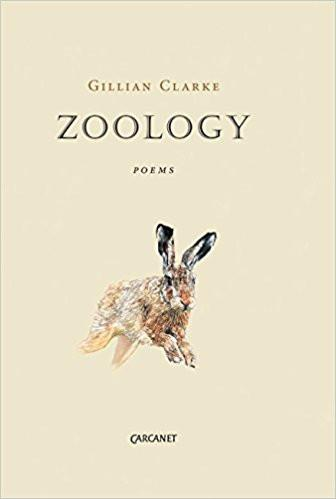 Featured image of Zoology