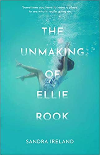 Featured image of THE UNMAKING OF ELLIE ROOK
