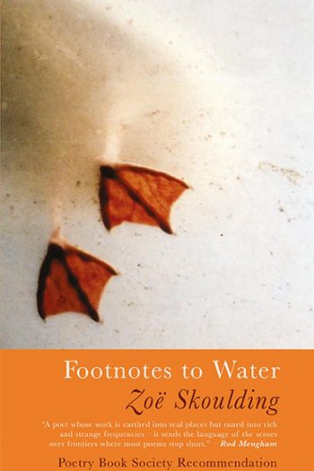 Featured image of Footnotes to Water